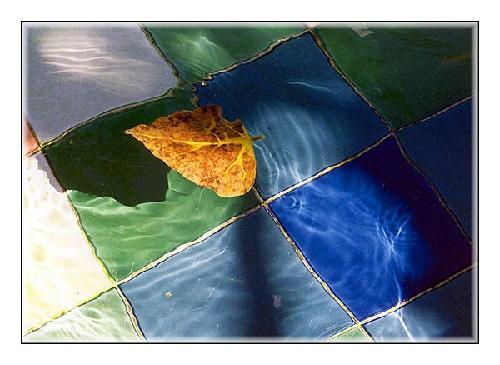 Abstrato/A folha