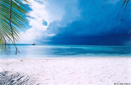 Paisagem Natural/Tempestade no Paraíso