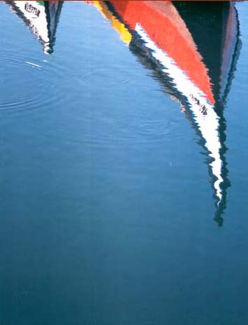 Paisagem Natural/reflexos de moliceiros