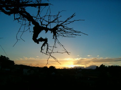 Paisagem Natural/Da minha casa vê-se o céu !!!!