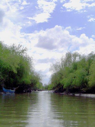 Paisagem Natural/Rio...