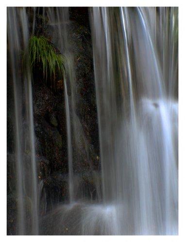 Paisagem Natural/Agua Pura