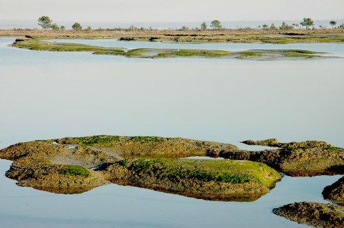 Paisagem Natural/plano de agua