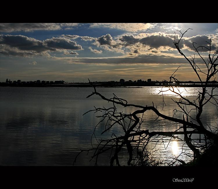Paisagem Natural/Vida e morte, sombra e luz...