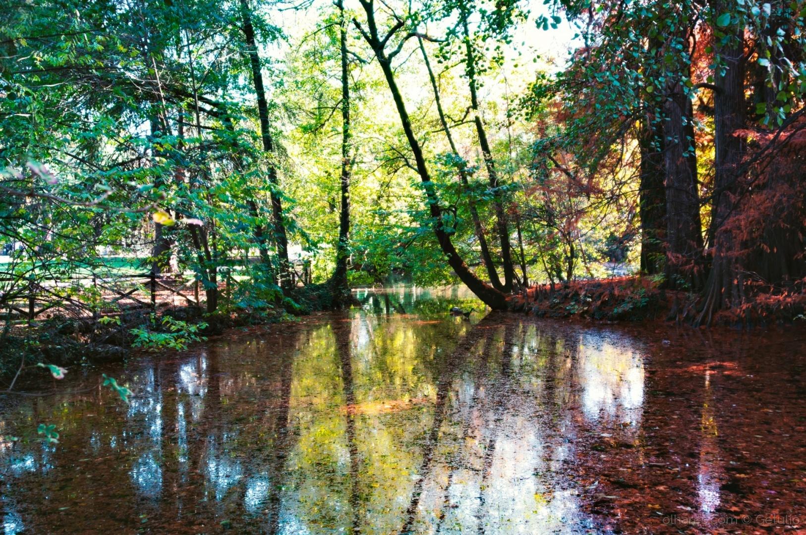 Paisagem Urbana/ Giardini Pubblici Indro Montanelli