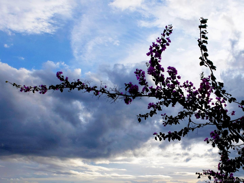 Paisagem Natural/Nuvens no Céu