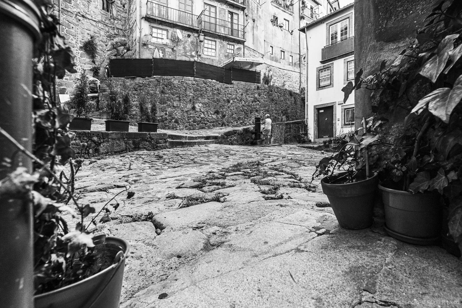 Fotografia de Rua/Leonor vai para a fonte