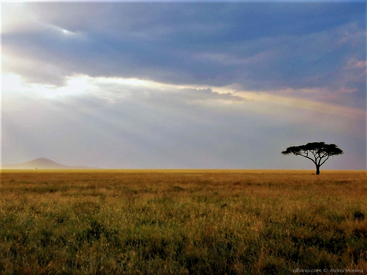 Paisagem Natural/África minha #1