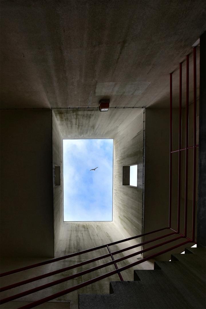 Arquitetura/A epifania do fingimento