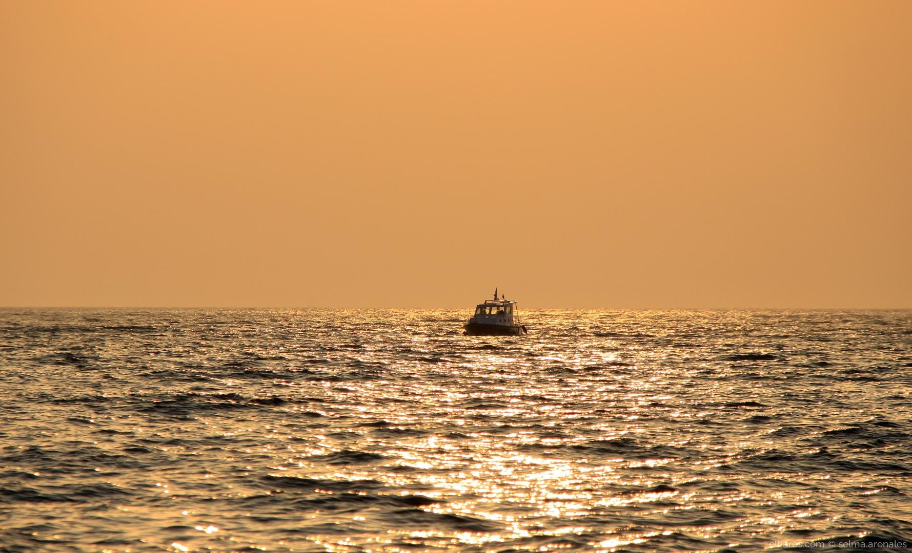 Paisagem Natural/Navegar é preciso...