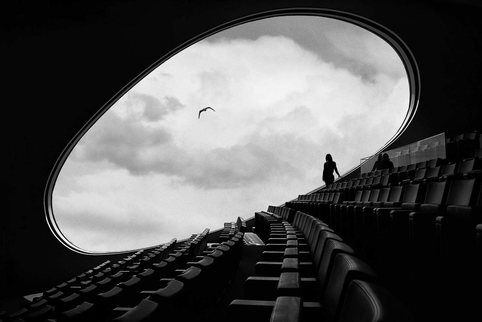 Arquitetura/Bird watching