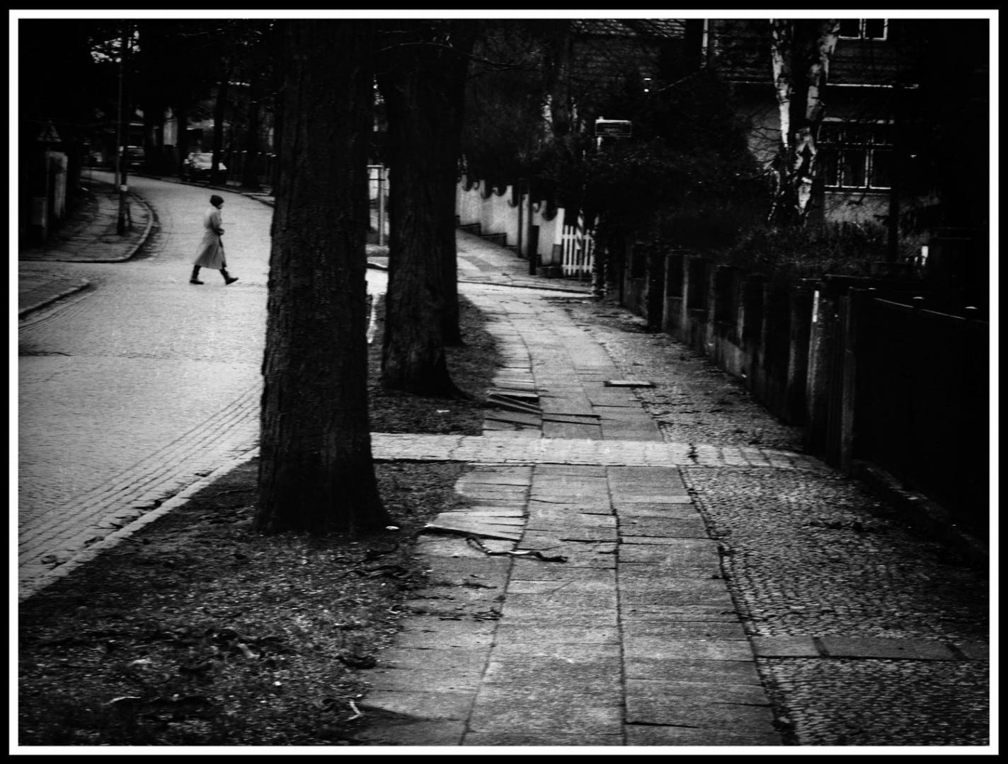 Gentes e Locais/Minha rua