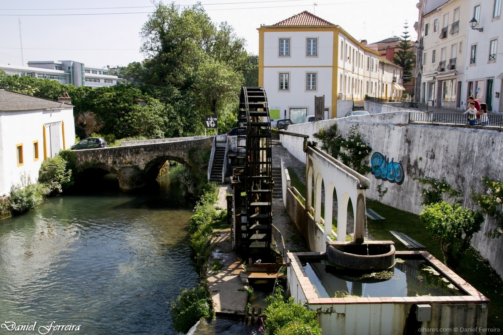 Gentes e Locais/Tarambola do rio Almonda