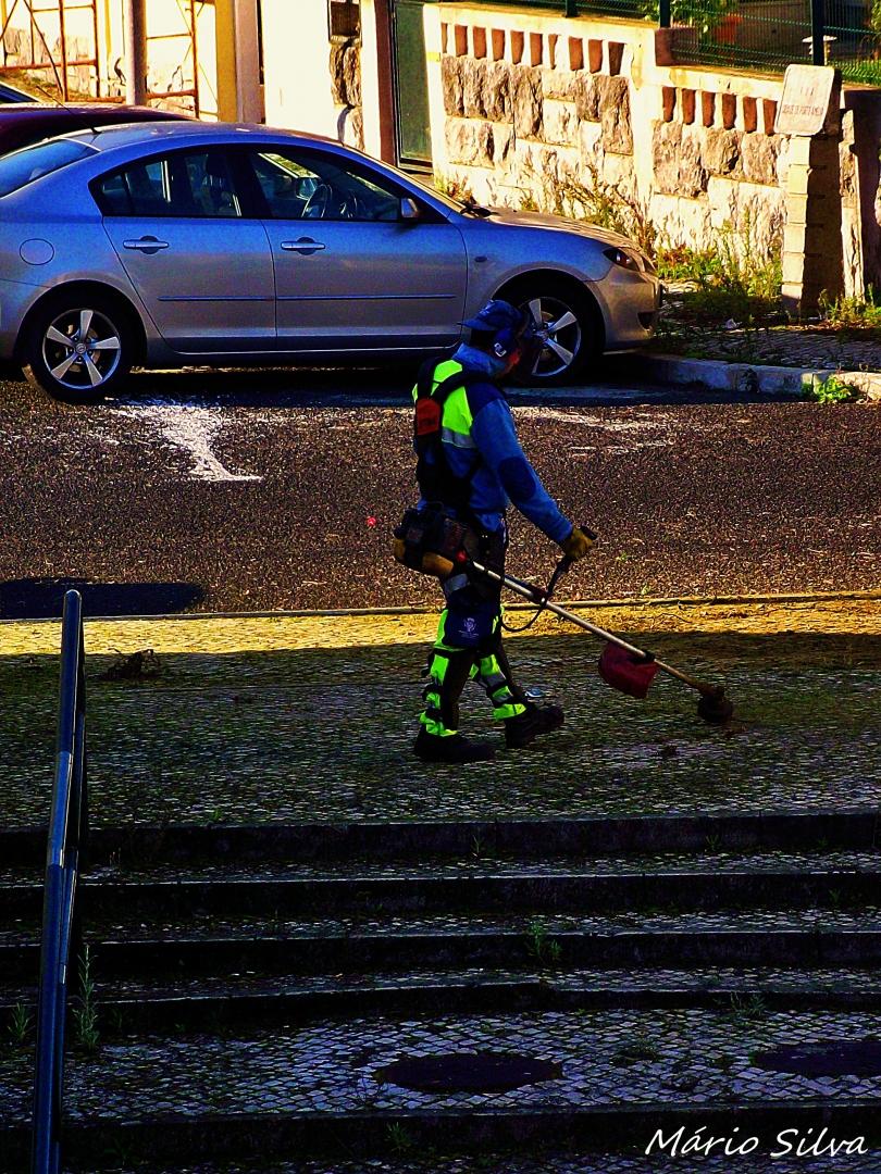 Fotografia de Rua/Tratar das ervas