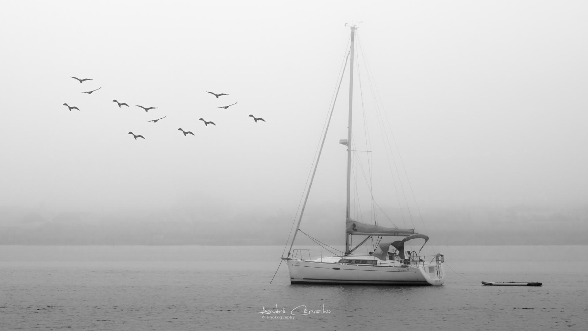 Paisagem Natural/Vida a bordo de um veleiro!