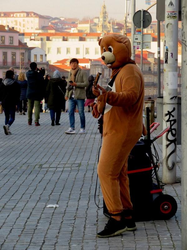 Fotojornalismo/Um urso na cidade