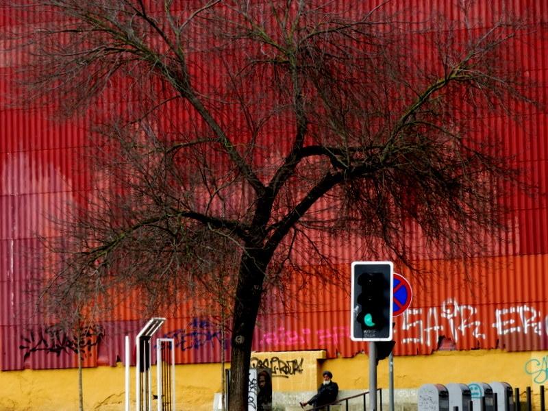 Fotografia de Rua/Acendeu o verde
