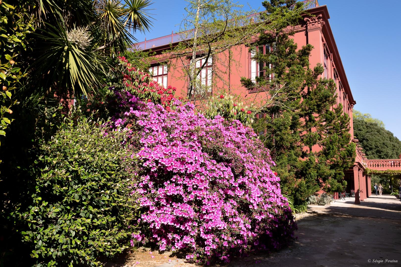 Outros/Jardim Botânico, Porto