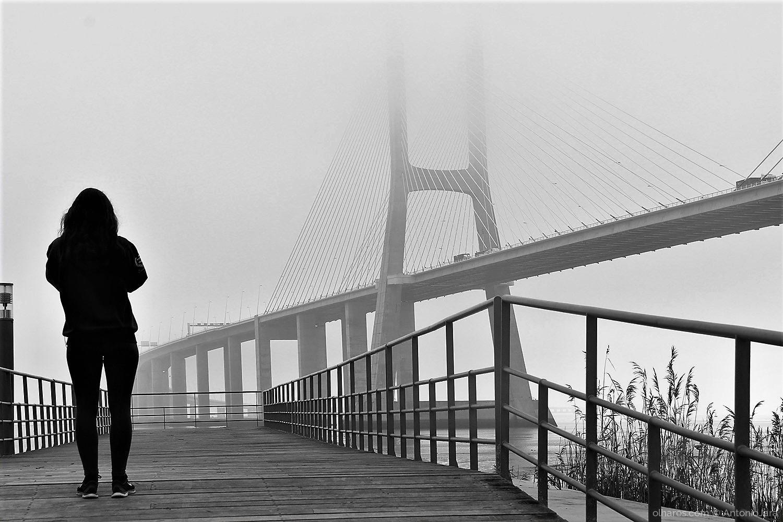 Paisagem Natural/FOTOGRAFANDO POR ENTRE O NEVOEIRO - Lisboa