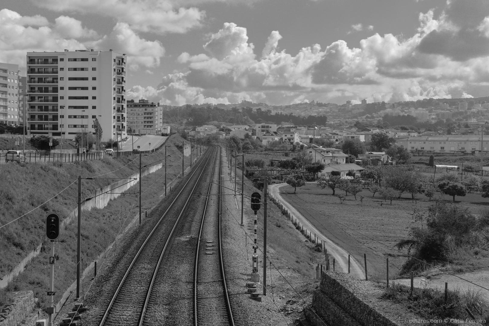 Fotografia de Rua/Linha da frente!