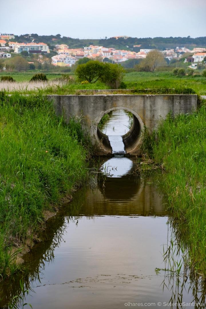 Paisagem Natural/RIBEIRA