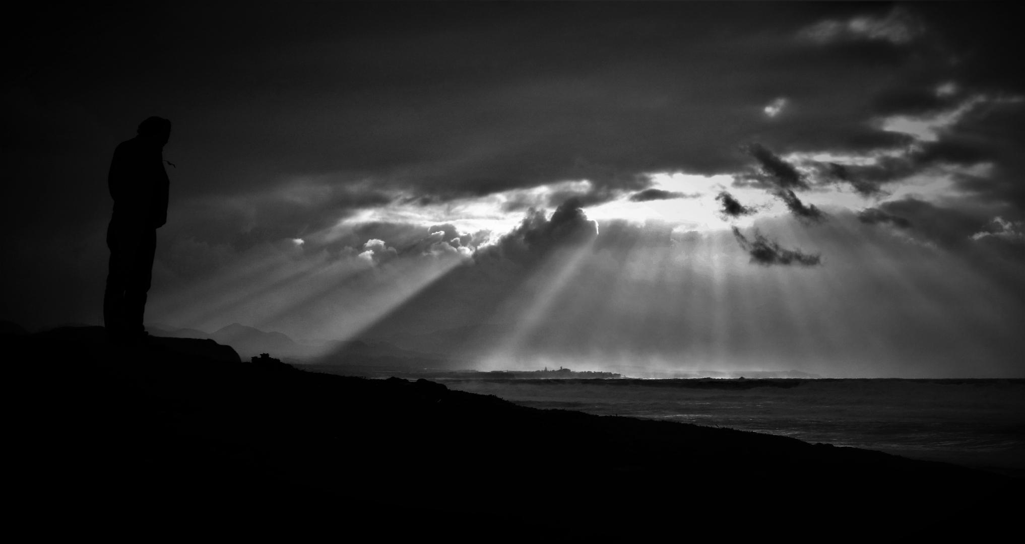 Outros/o Homem, a ave e a Luz de Deus ! O sentido da Vida