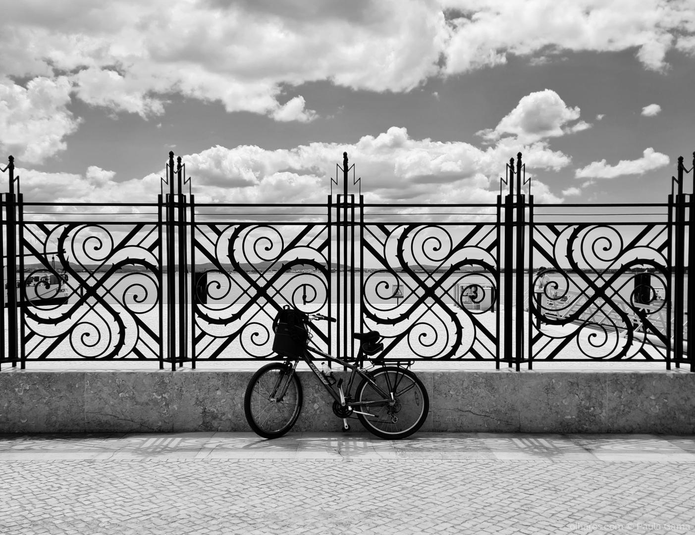 Paisagem Urbana/As bicicletas