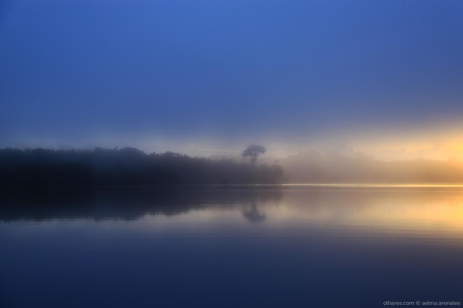 Paisagem Natural/Reflexos na Amazônia!