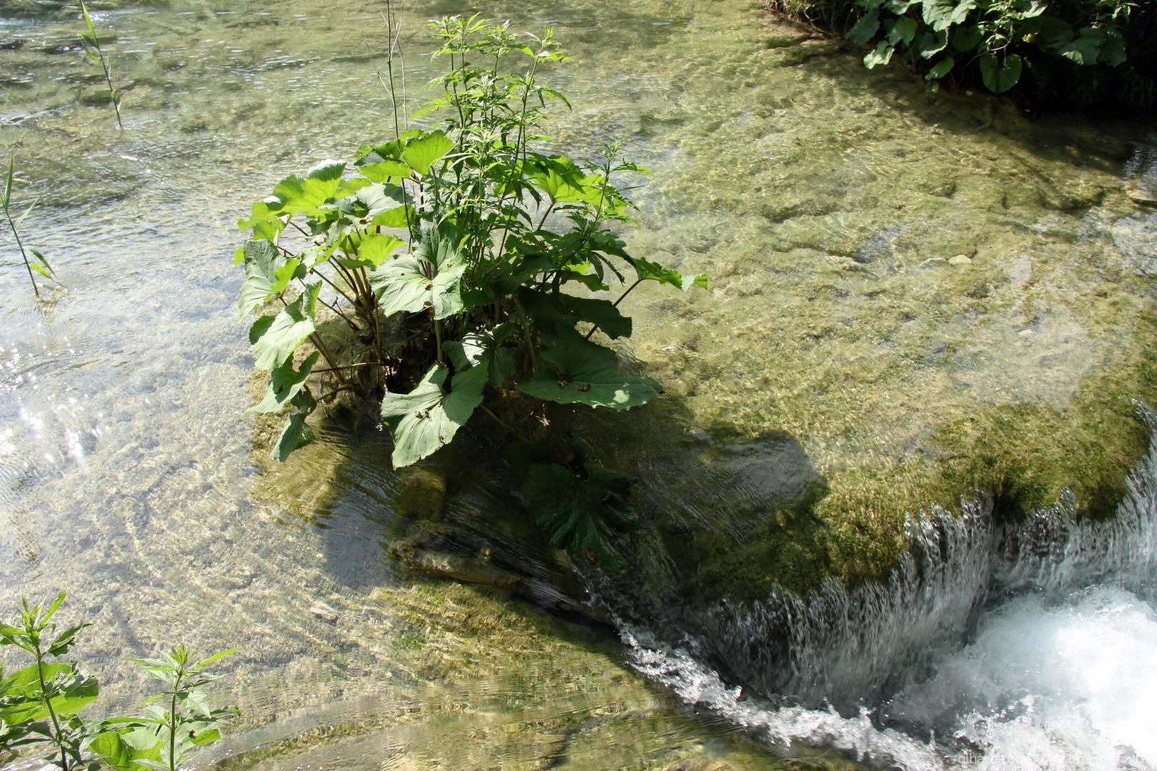 Paisagem Natural/Águas!