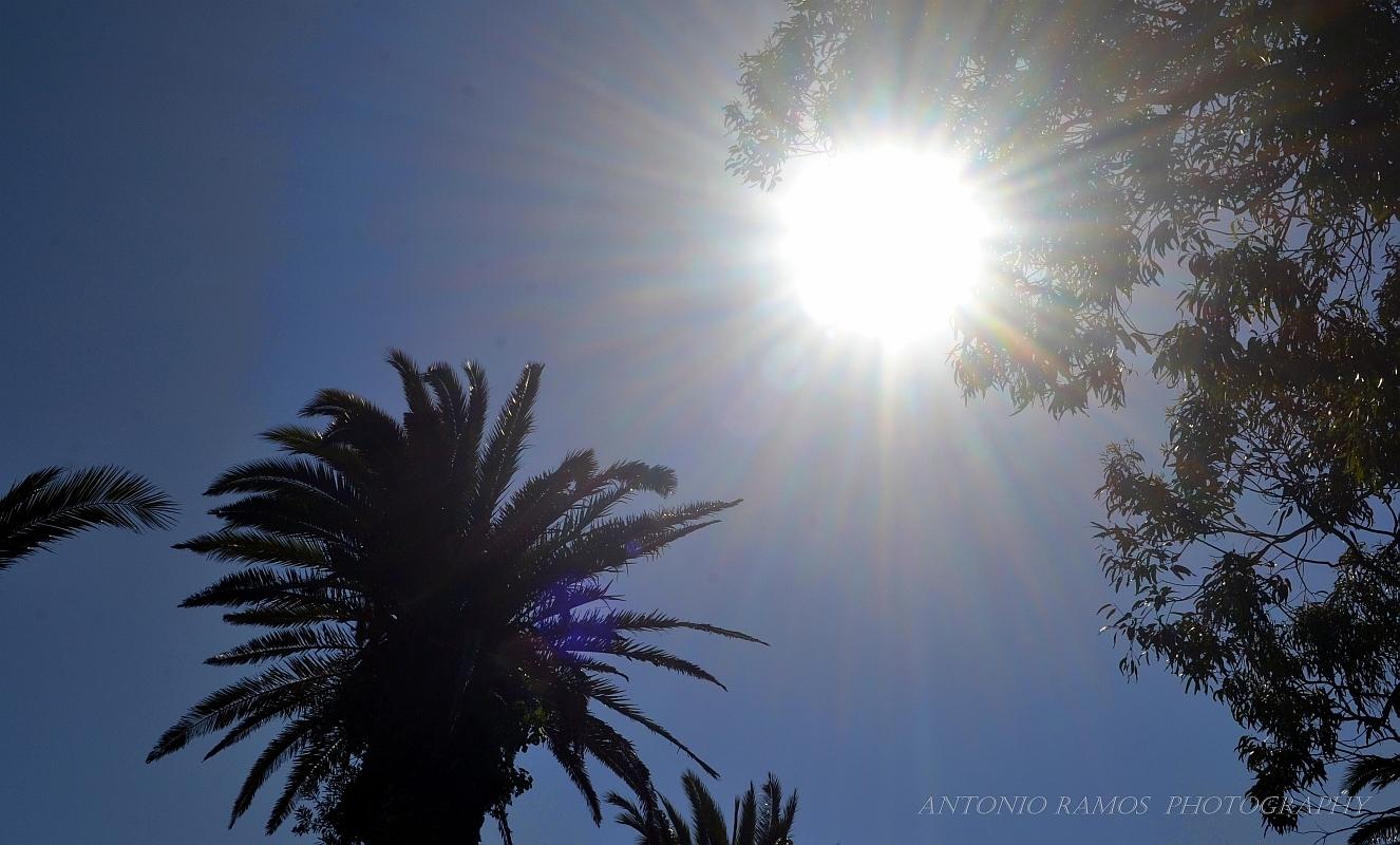 Paisagem Natural/Sol – Astro rei