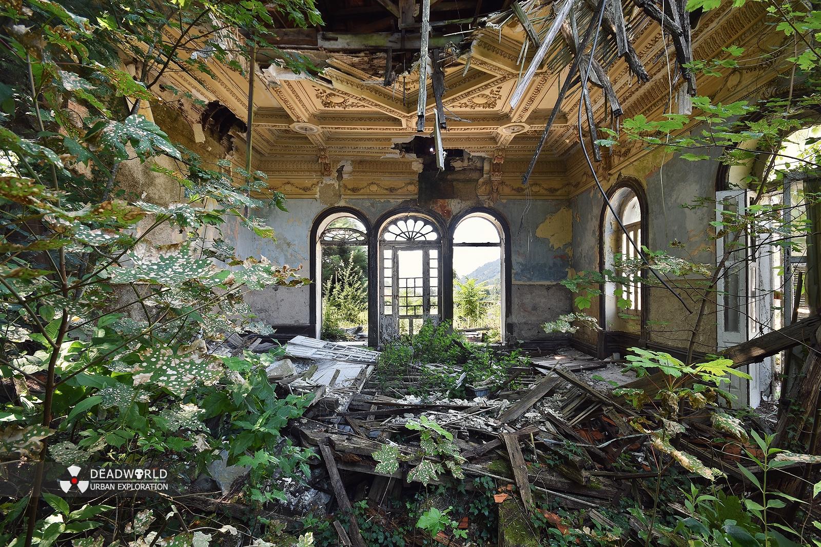 Arquitetura/Quando a natureza reclama o seu lugar