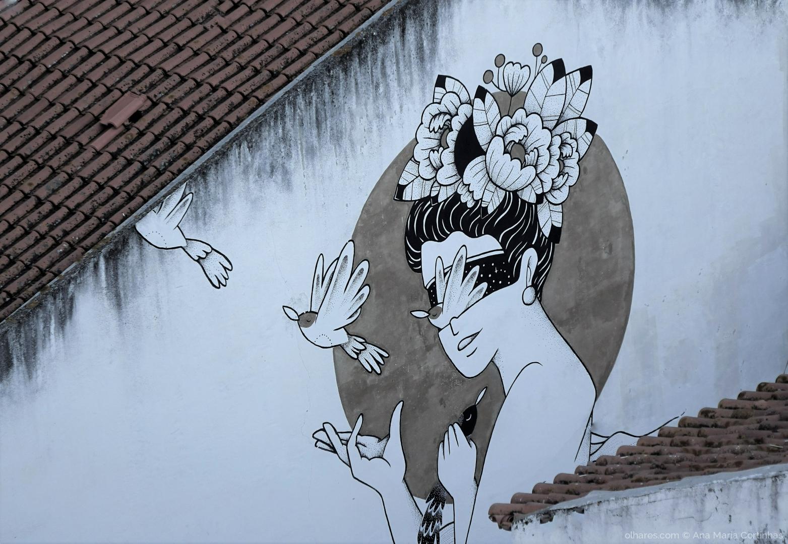 Fotografia de Rua/A dama dos telhados    (Pf ler)