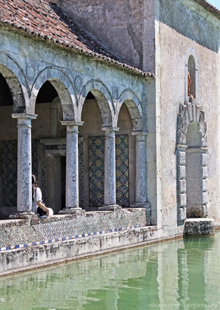Gentes e Locais/LEMBRANDO VENEZA - Lago do Jardim do Palácio da Ba