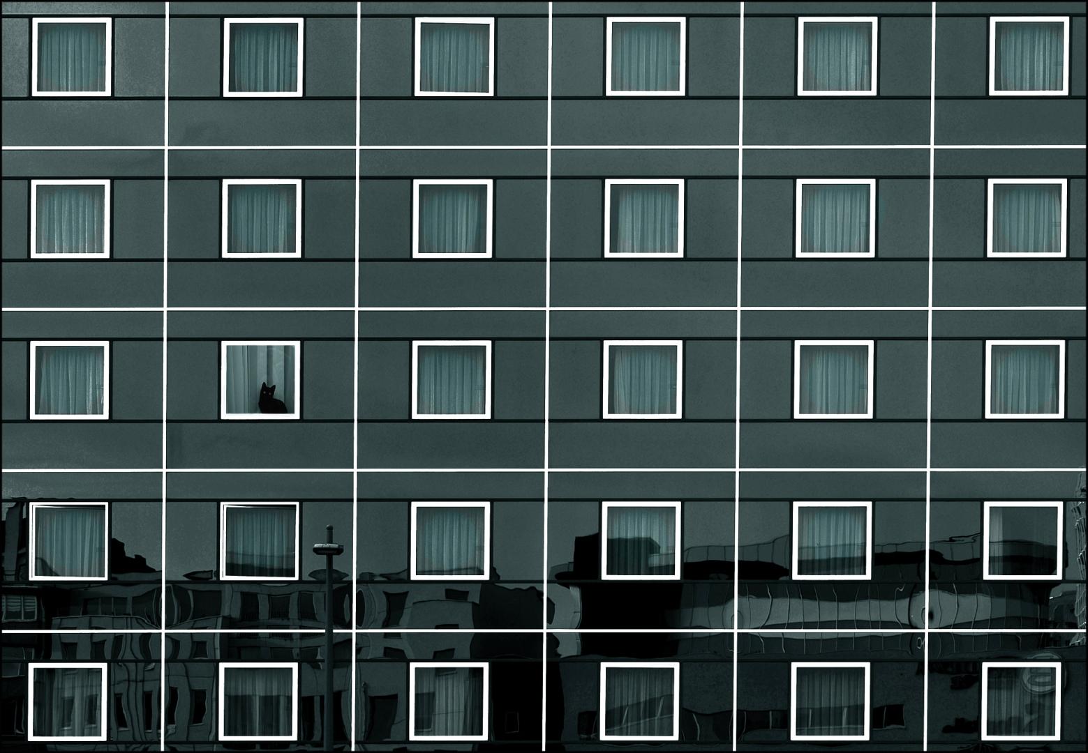 Paisagem Urbana/Curtains