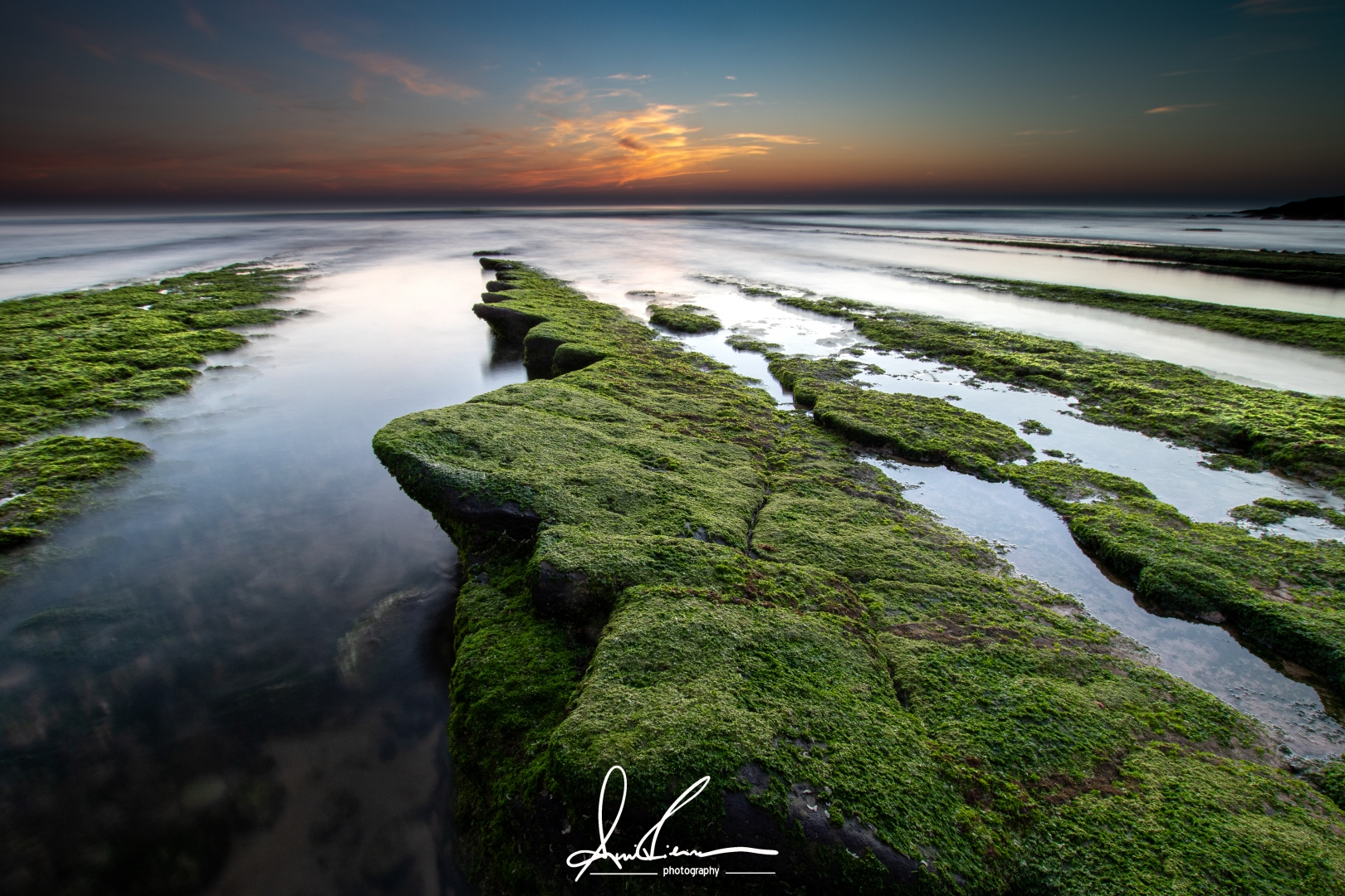 Paisagem Natural/ The green wave The green wave