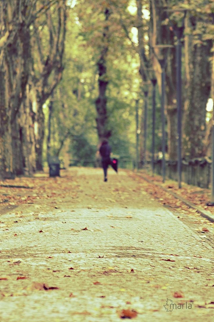 Fotografia de Rua/do tempo suspenso
