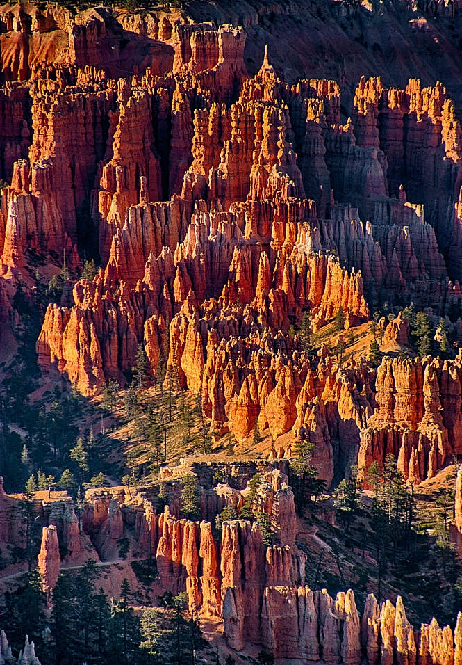 Paisagem Natural/ USA National Parks V