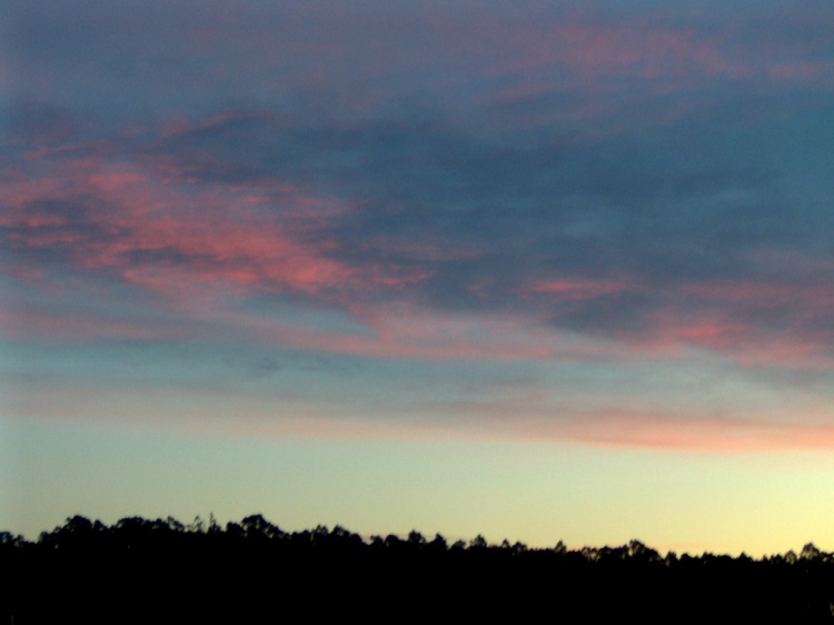 Paisagem Natural/Into the pink in the skies...