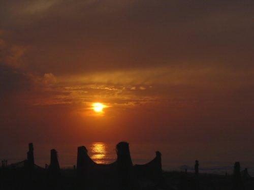 Paisagem Natural/Silhuetas ao Pôr do Sol