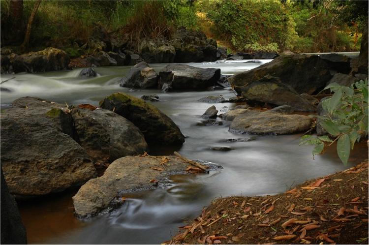 Paisagem Natural/Riacho Verde 04