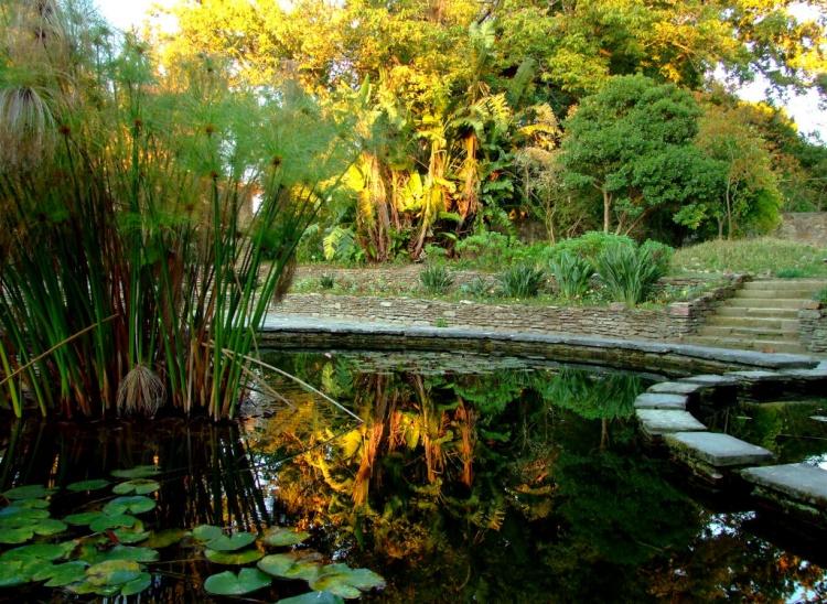 Jardim Botânico, Porto Foto de Tiago Pinho  Olhares  Fotografia