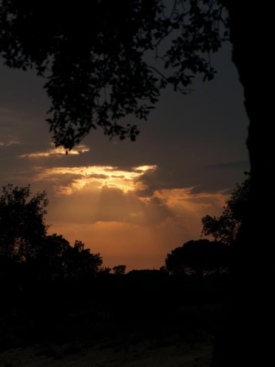 Paisagem Natural/amanhecer