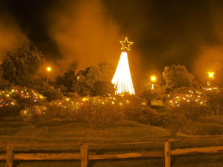 Outros/Natal nas Furnas - São Miguel - AÇORES
