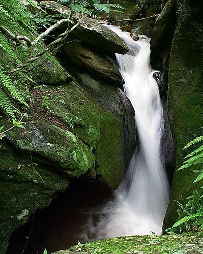 Paisagem Natural/Cachoeira das Andorinhas #2