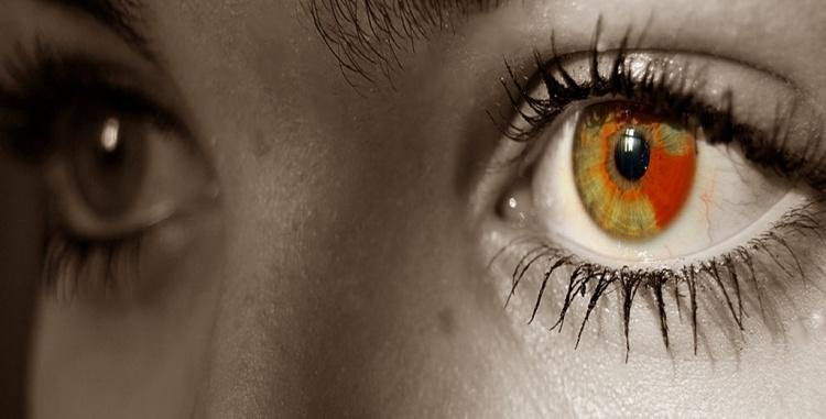 Macro/Olhos meus I