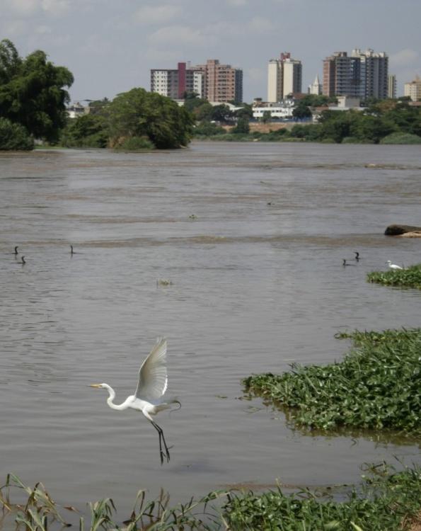 Gentes e Locais/Ainda há vida no Rio Doce!