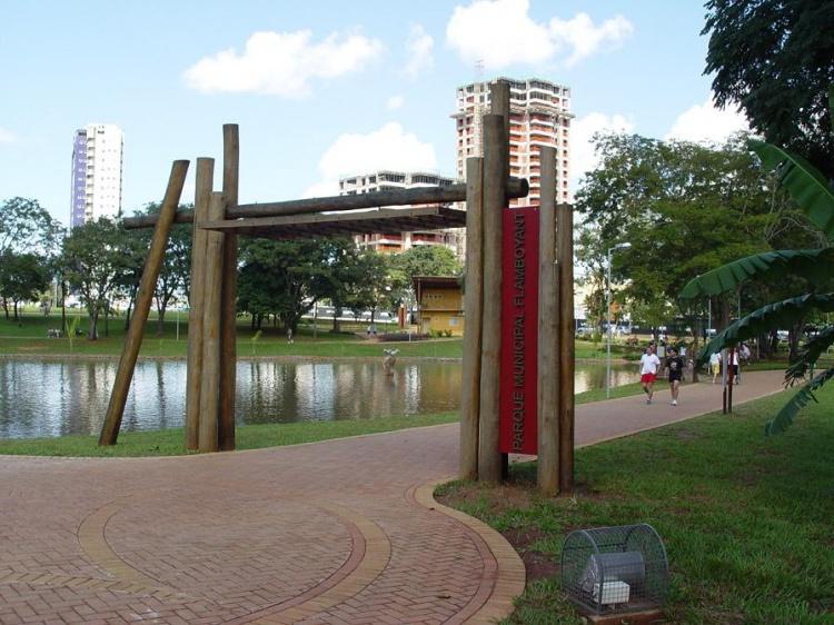 Resultado de imagem para Parque Flamboyant
