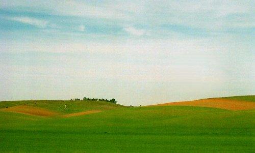 Paisagem Natural/Verde