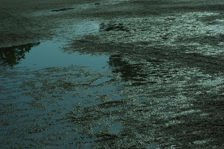 Outros/wet