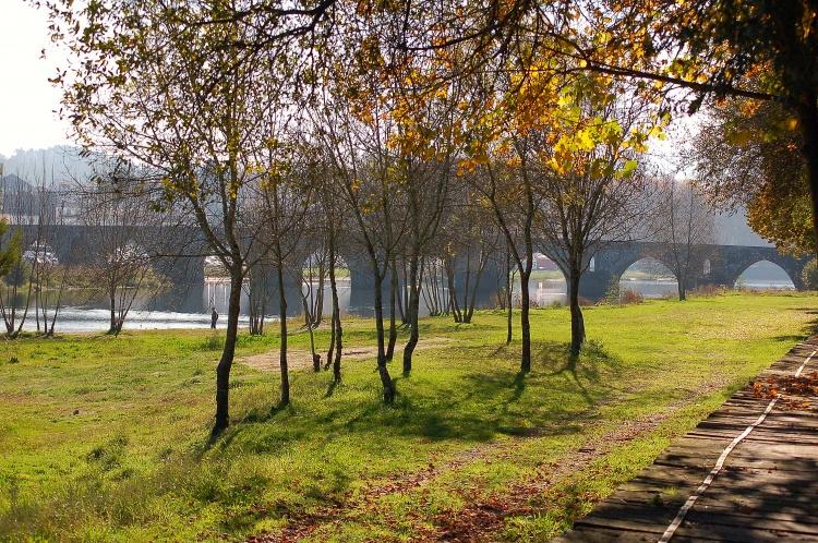Paisagem Natural/Estes dias de Outono...